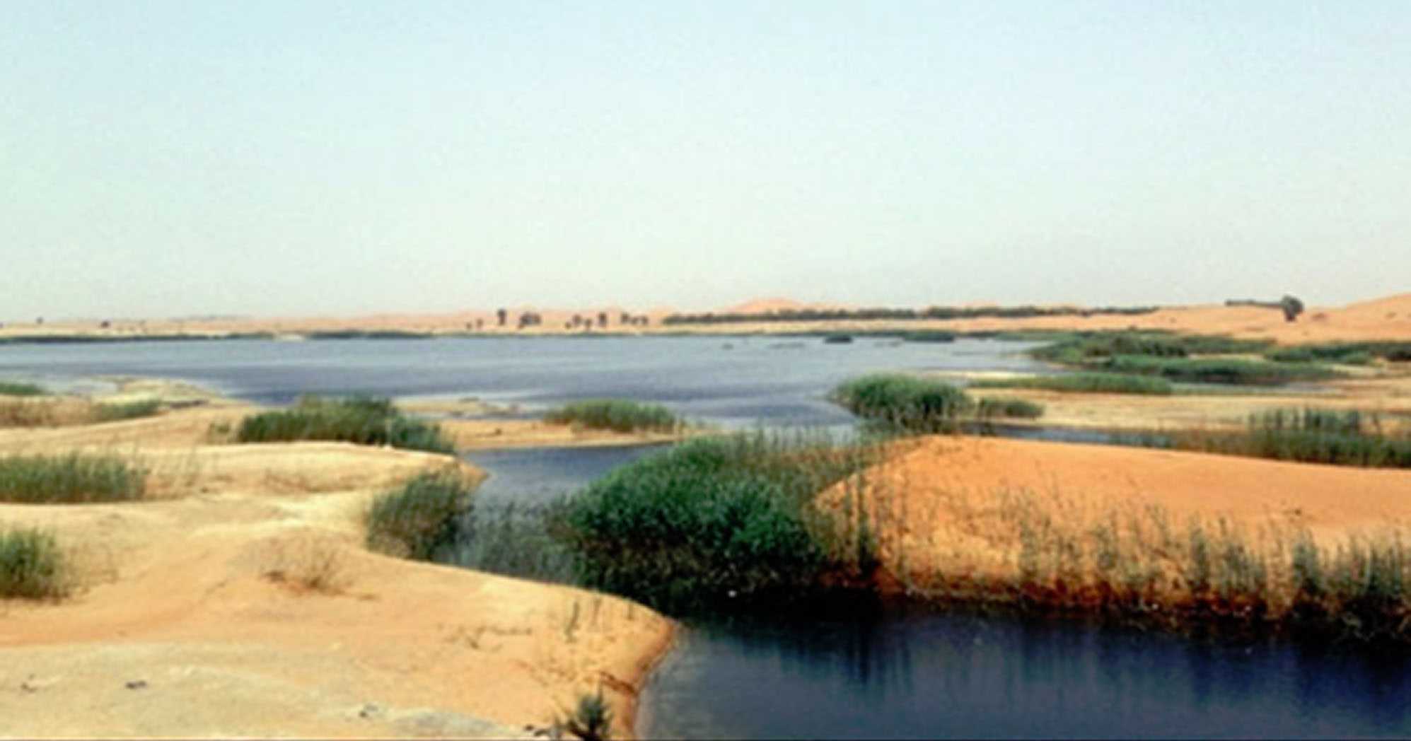 Global Surface Water Increased but Water Quality Remains a Concern