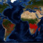 wildfire_Africa_2019